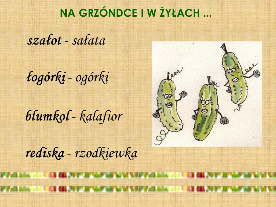 szałot - sałata łogórki - ogórki blumkol - kalafior
