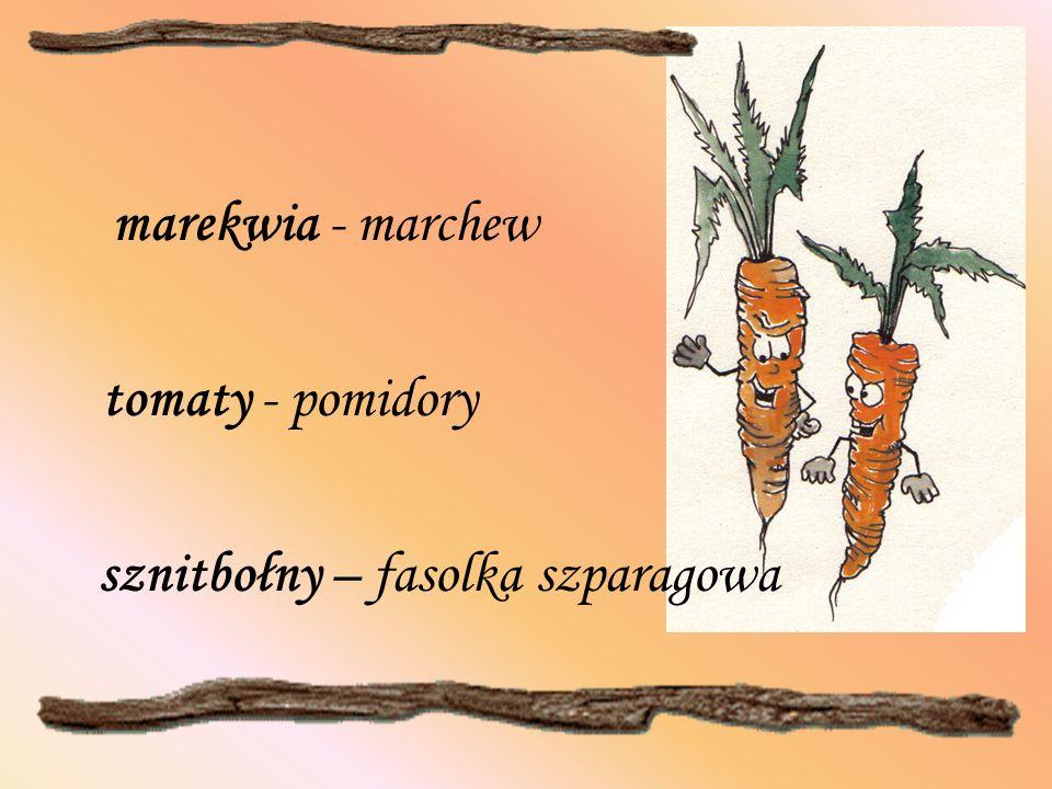 sznitbołny – fasolka szparagowa