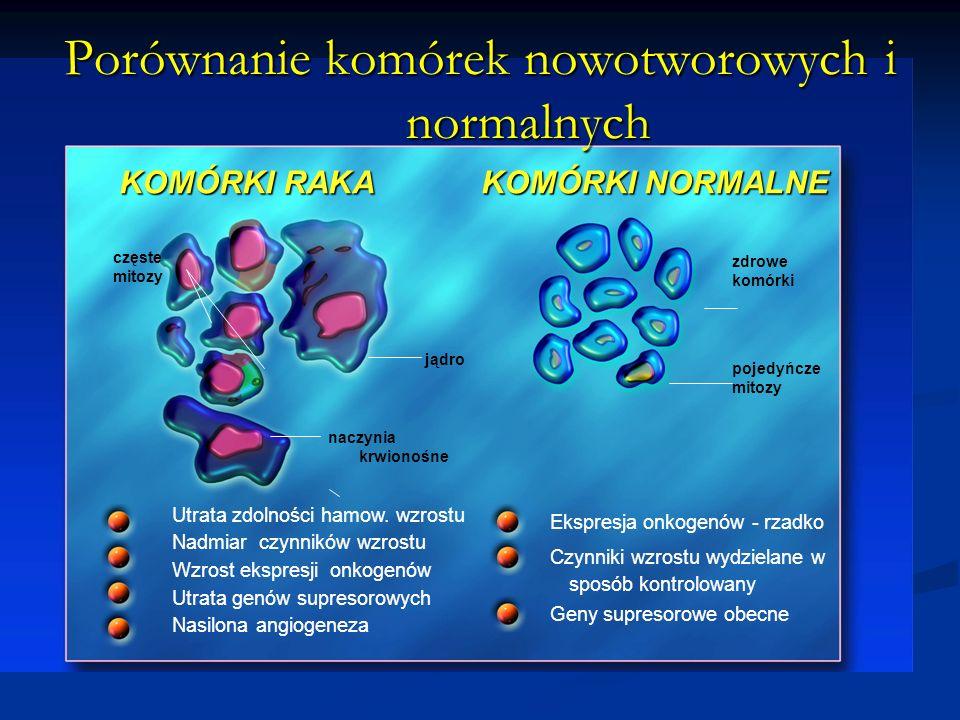 Porównanie komórek nowotworowych i normalnych