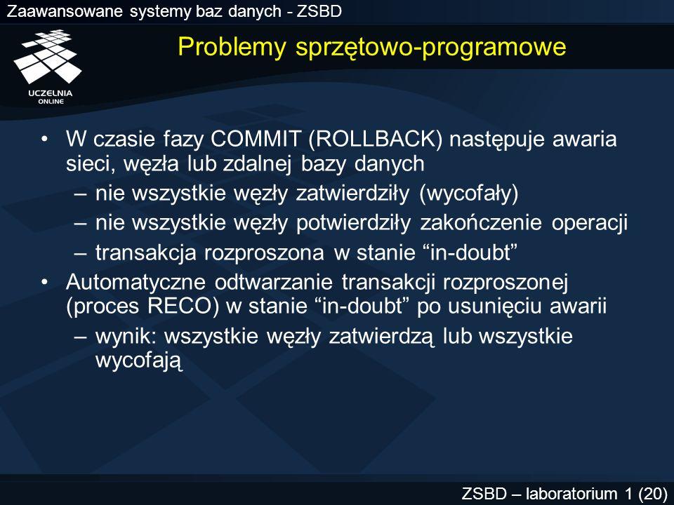 Problemy sprzętowo-programowe