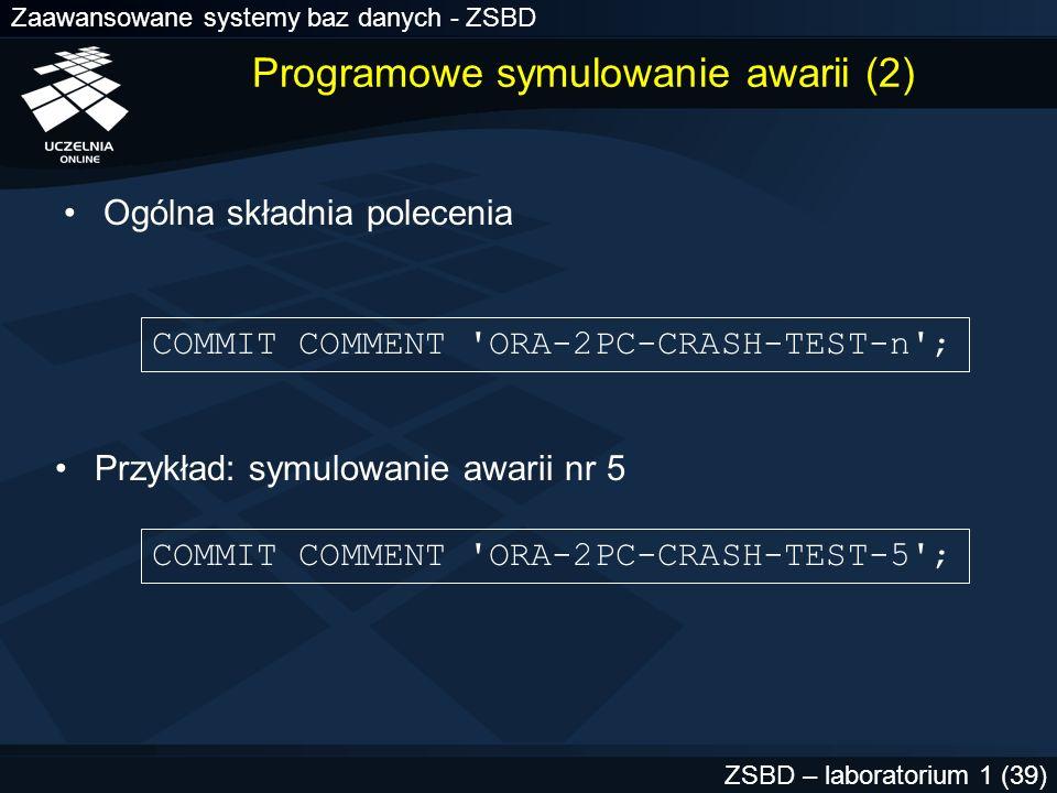 Programowe symulowanie awarii (2)