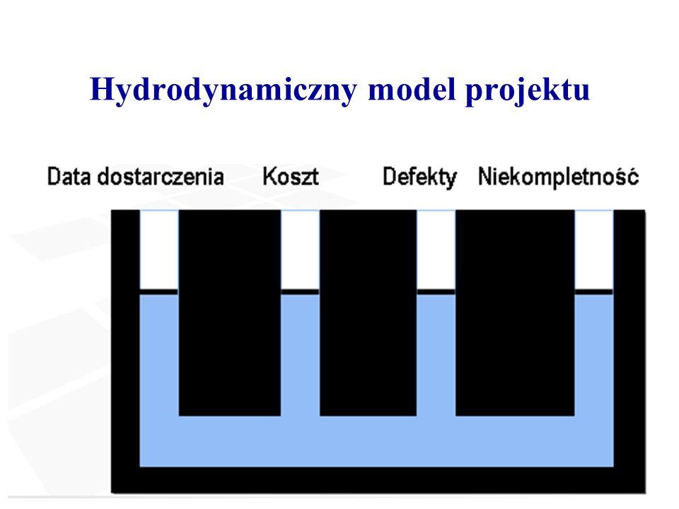 Hydrodynamiczny model projektu