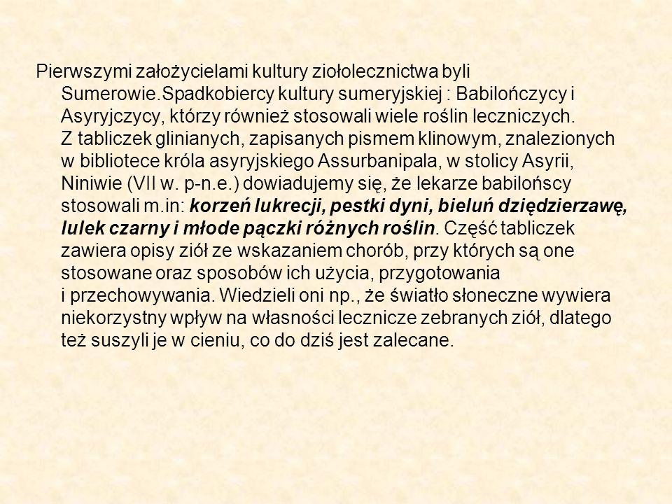Pierwszymi założycielami kultury ziołolecznictwa byli Sumerowie
