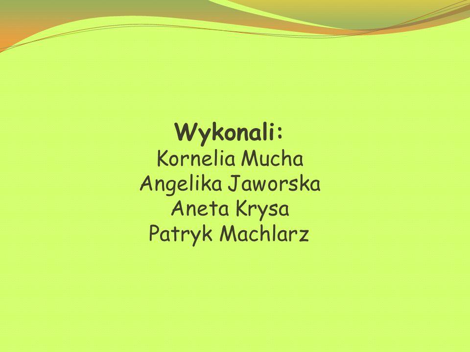 Wykonali: Kornelia Mucha Angelika Jaworska Aneta Krysa Patryk Machlarz