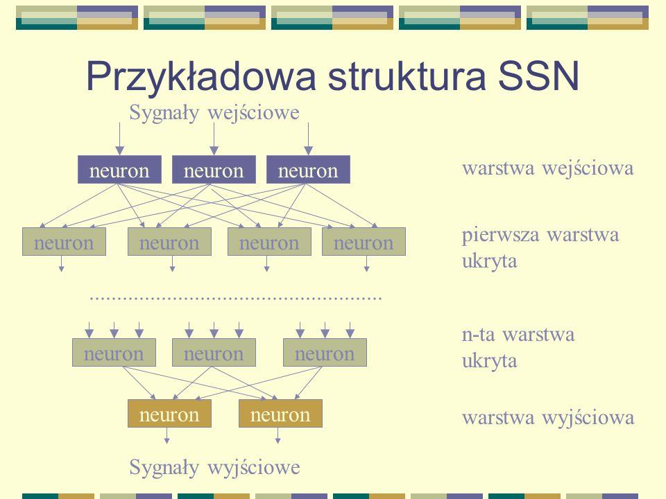 Przykładowa struktura SSN