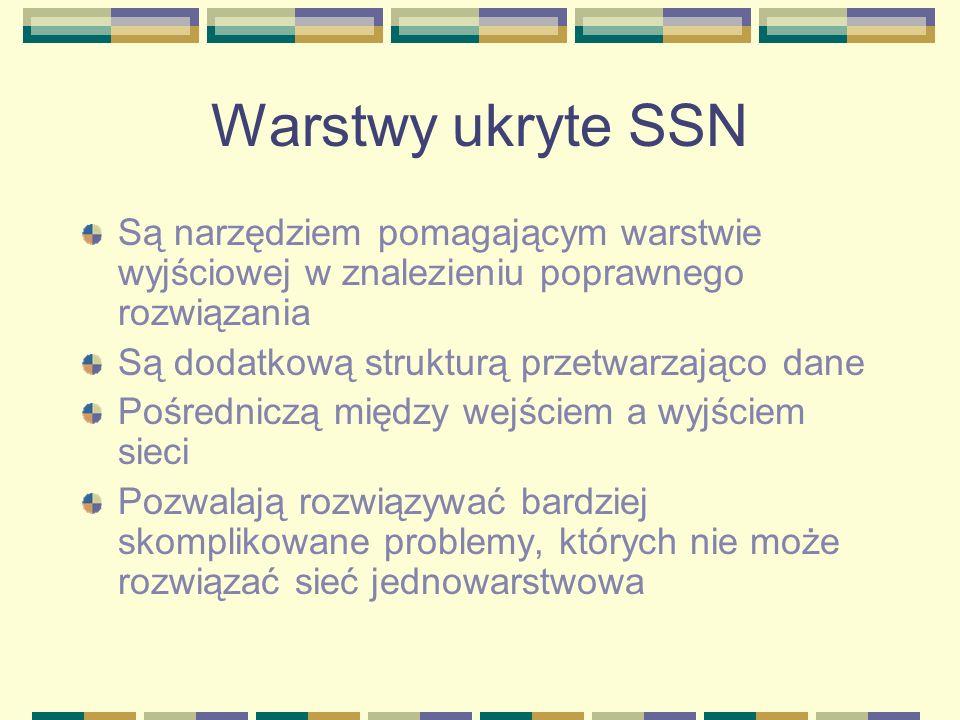 Warstwy ukryte SSNSą narzędziem pomagającym warstwie wyjściowej w znalezieniu poprawnego rozwiązania.