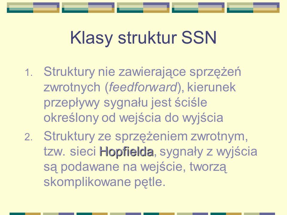 Klasy struktur SSN Struktury nie zawierające sprzężeń zwrotnych (feedforward), kierunek przepływy sygnału jest ściśle określony od wejścia do wyjścia.