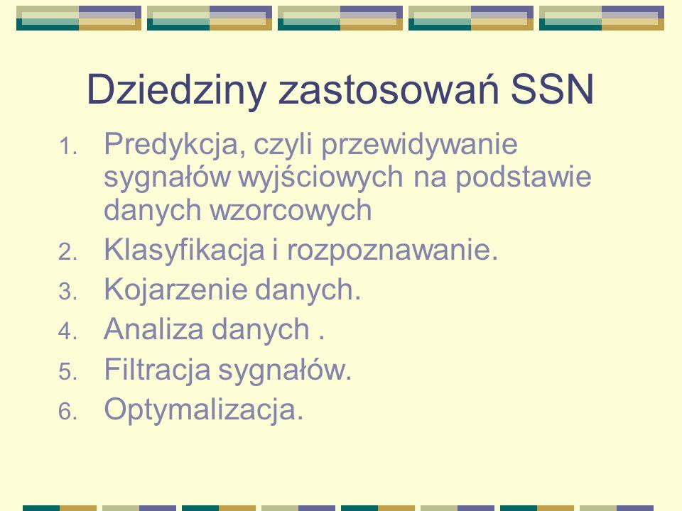 Dziedziny zastosowań SSN