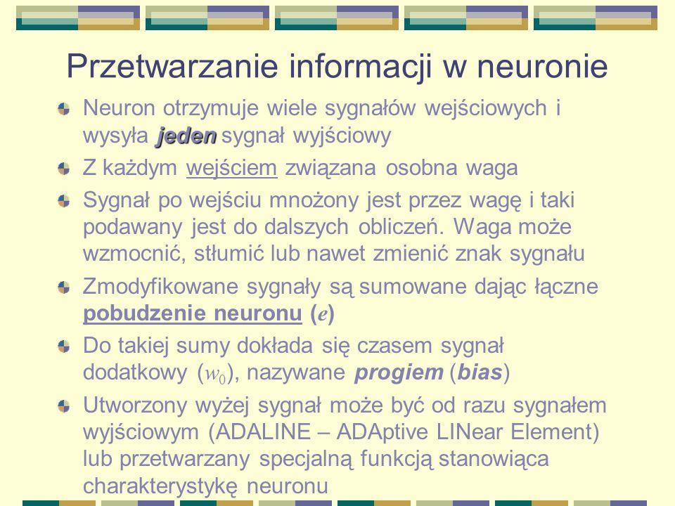 Przetwarzanie informacji w neuronie