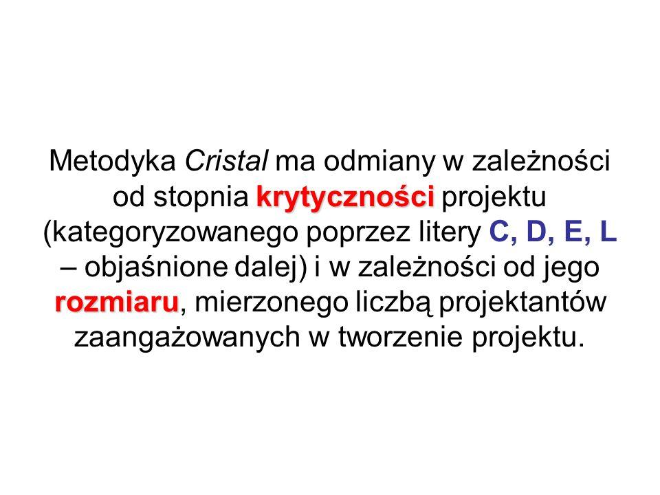 Metodyka Cristal ma odmiany w zależności od stopnia krytyczności projektu (kategoryzowanego poprzez litery C, D, E, L – objaśnione dalej) i w zależności od jego rozmiaru, mierzonego liczbą projektantów zaangażowanych w tworzenie projektu.