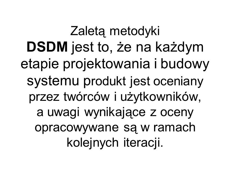Zaletą metodyki DSDM jest to, że na każdym etapie projektowania i budowy systemu produkt jest oceniany przez twórców i użytkowników, a uwagi wynikające z oceny opracowywane są w ramach kolejnych iteracji.