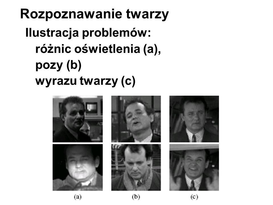 Rozpoznawanie twarzy Ilustracja problemów: różnic oświetlenia (a),