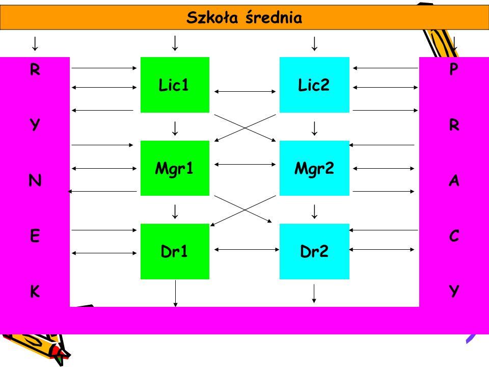 Szkoła średnia ↓ R Lic1 Lic2 P Y Mgr1 Mgr2 N A E Dr1 Dr2 C K