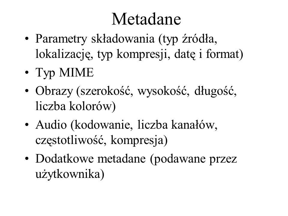 Metadane Parametry składowania (typ źródła, lokalizację, typ kompresji, datę i format) Typ MIME.