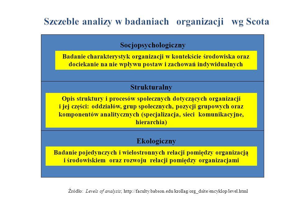 Szczeble analizy w badaniach organizacji wg Scota