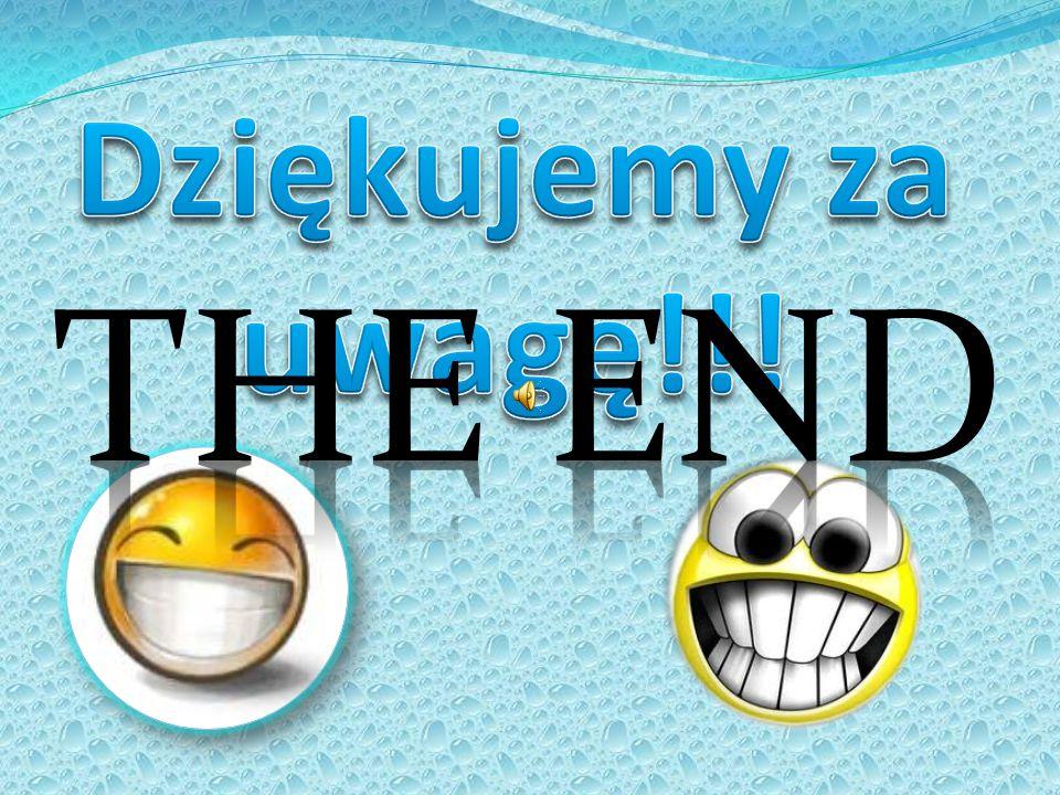 Dziękujemy za uwagę!!! THE END