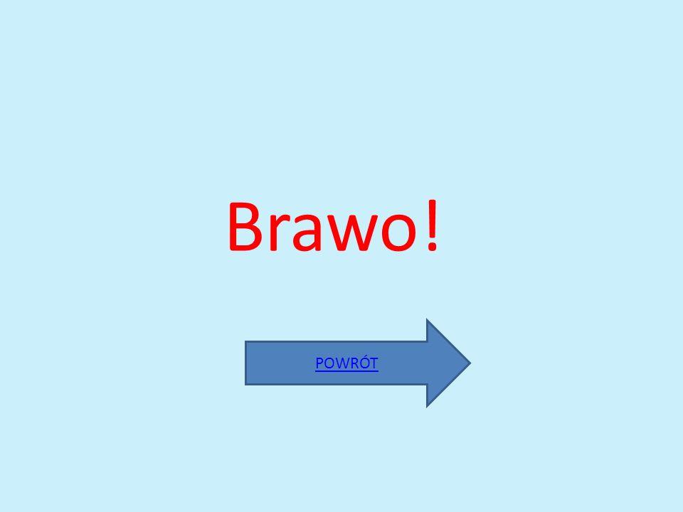 Brawo! POWRÓT