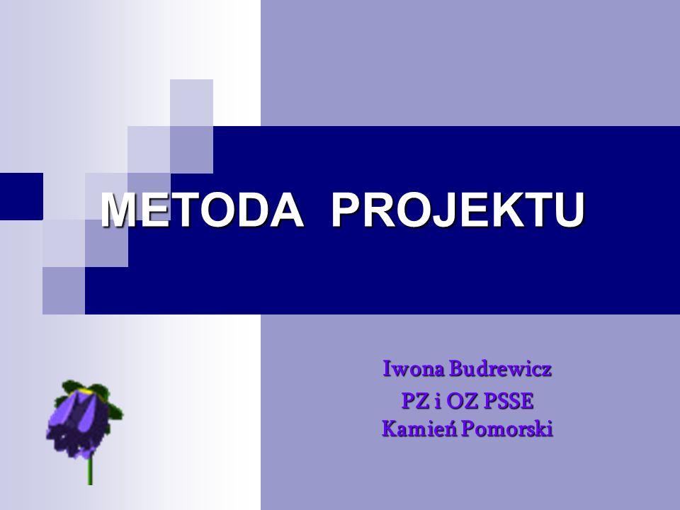 Iwona Budrewicz PZ i OZ PSSE Kamień Pomorski
