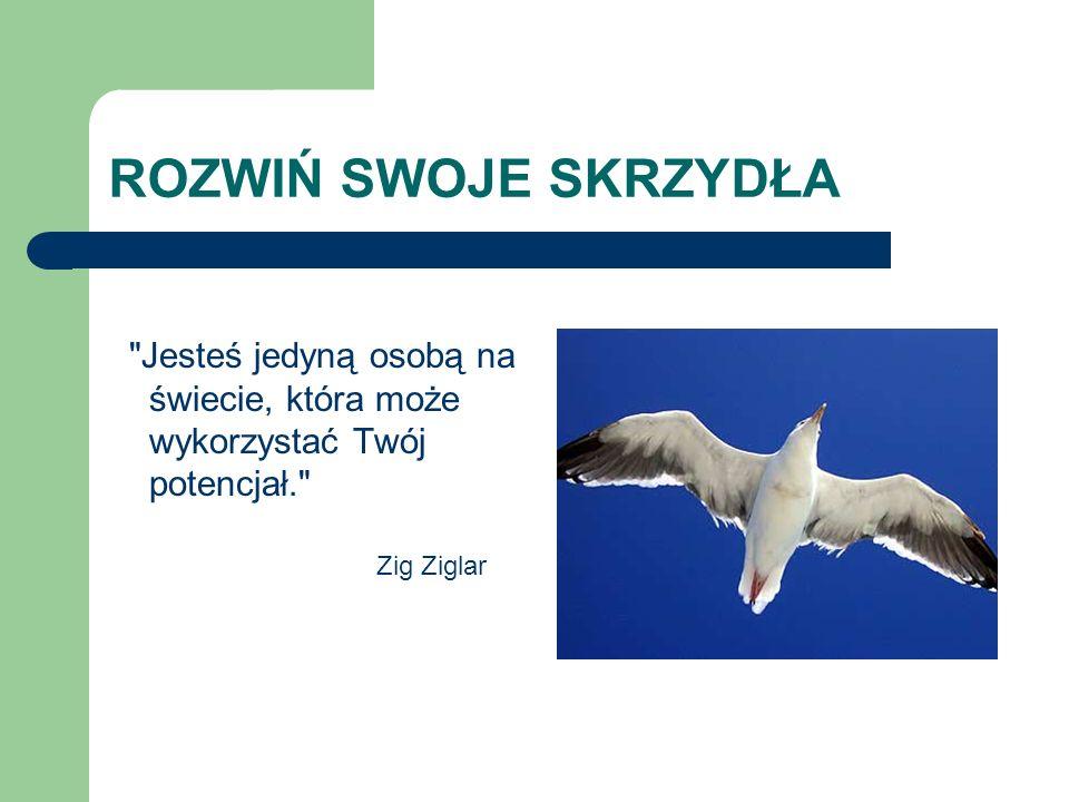 ROZWIŃ SWOJE SKRZYDŁA Jesteś jedyną osobą na świecie, która może wykorzystać Twój potencjał. Zig Ziglar.