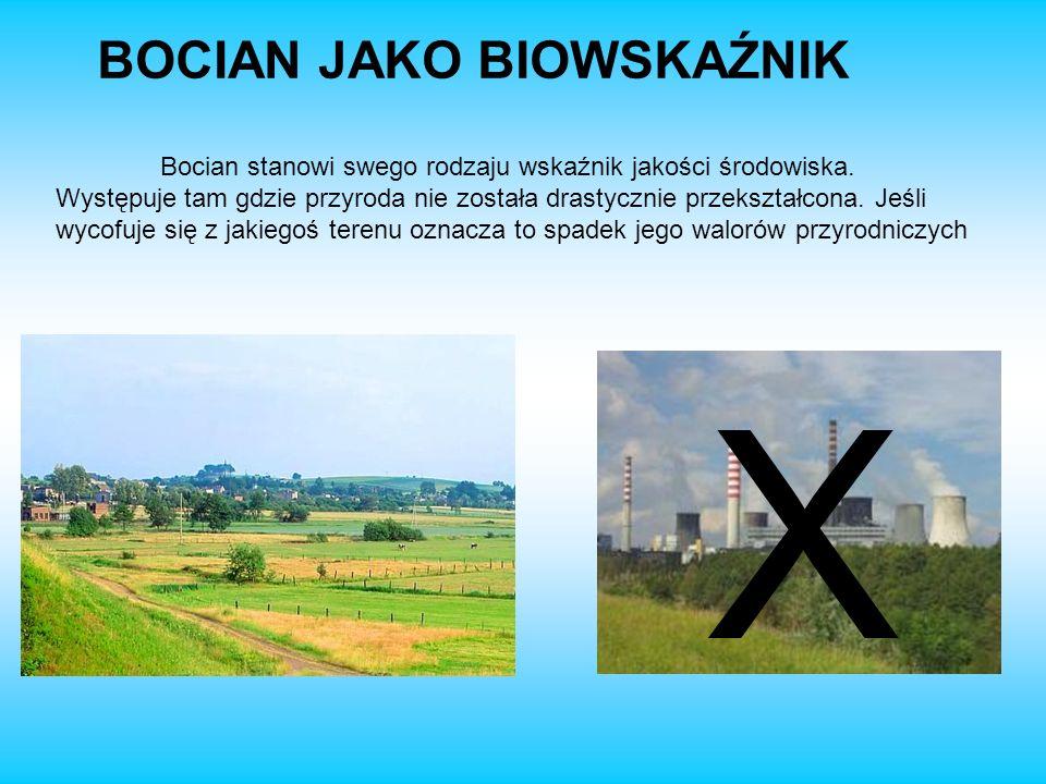 X BOCIAN JAKO BIOWSKAŹNIK