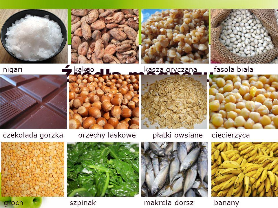 Źródła magnezu nigari kakao kasza gryczana fasola biała