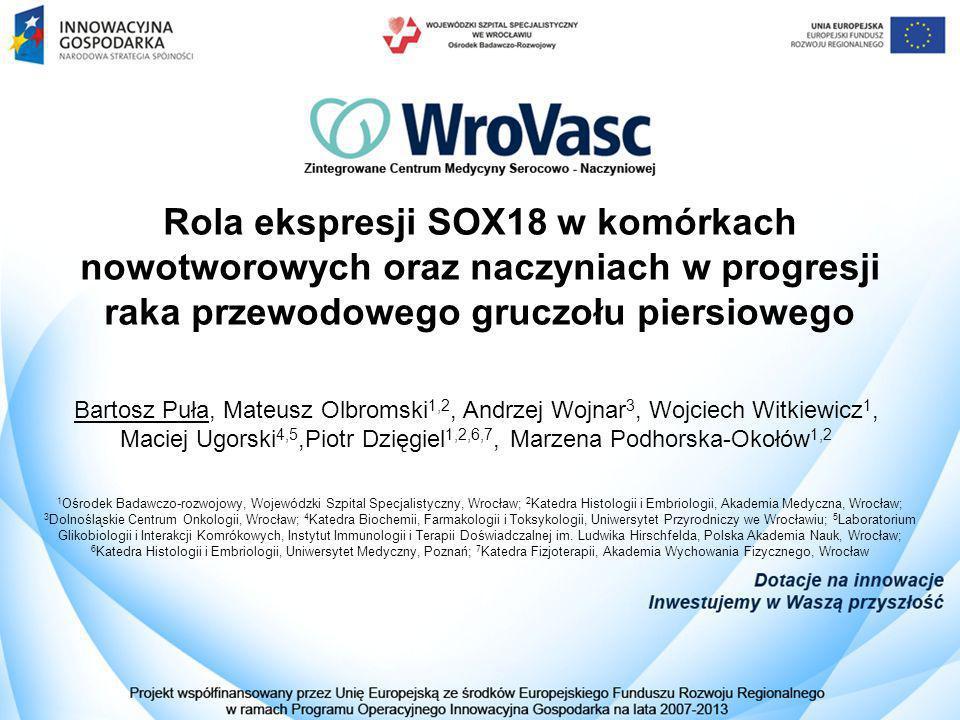 Rola ekspresji SOX18 w komórkach nowotworowych oraz naczyniach w progresji raka przewodowego gruczołu piersiowego