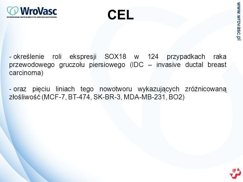 CEL określenie roli ekspresji SOX18 w 124 przypadkach raka przewodowego gruczołu piersiowego (IDC – invasive ductal breast carcinoma)