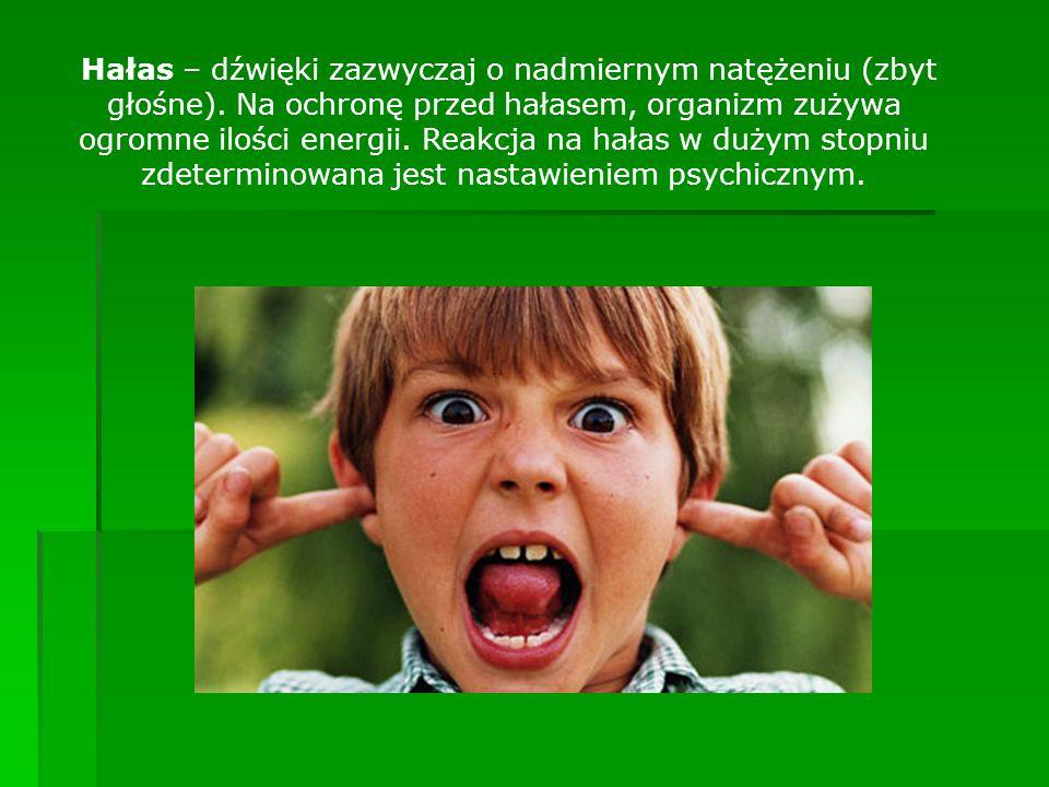 Hałas – dźwięki zazwyczaj o nadmiernym natężeniu (zbyt głośne)