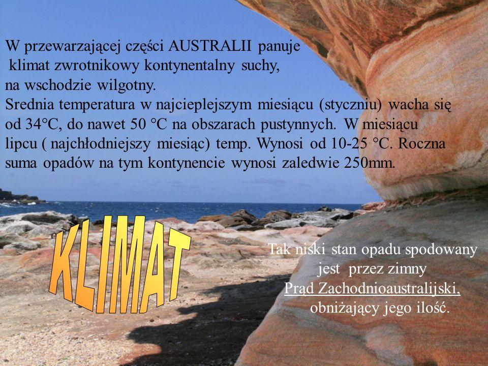 W przewarzającej części AUSTRALII panuje klimat zwrotnikowy kontynentalny suchy, na wschodzie wilgotny. Srednia temperatura w najcieplejszym miesiącu (styczniu) wacha się od 34°C, do nawet 50 °C na obszarach pustynnych. W miesiącu lipcu ( najchłodniejszy miesiąc) temp. Wynosi od 10-25 °C. Roczna suma opadów na tym kontynencie wynosi zaledwie 250mm.