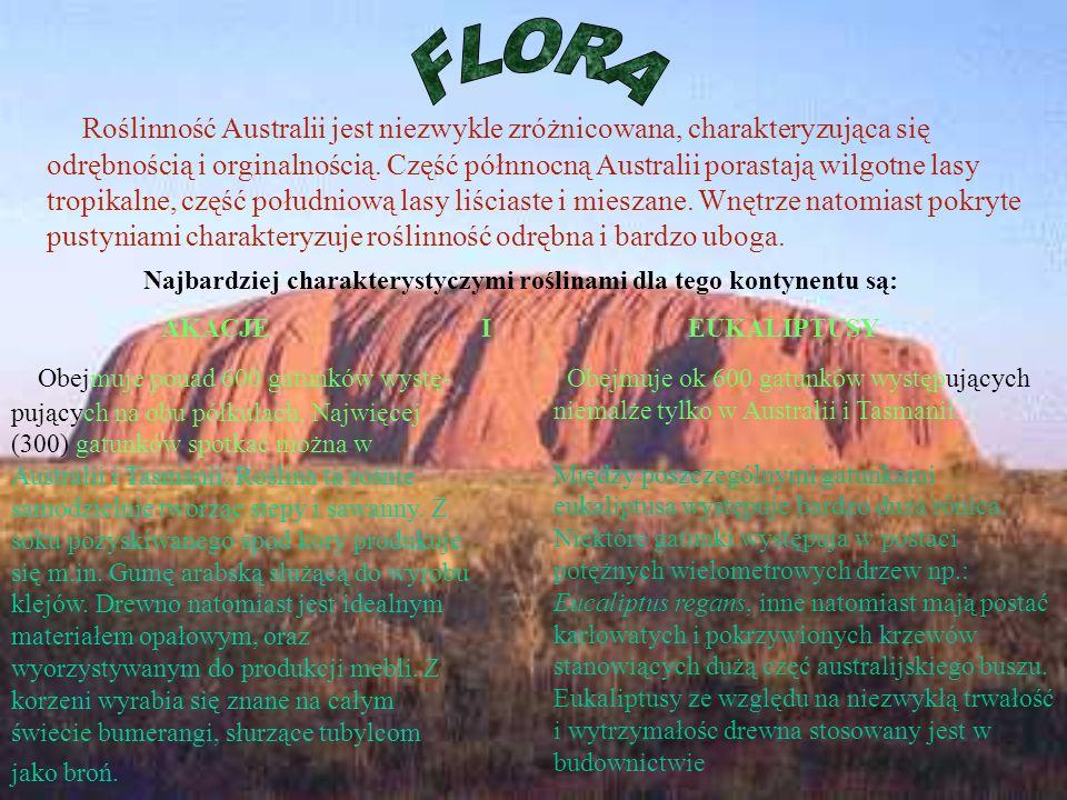 Najbardziej charakterystyczymi roślinami dla tego kontynentu są: