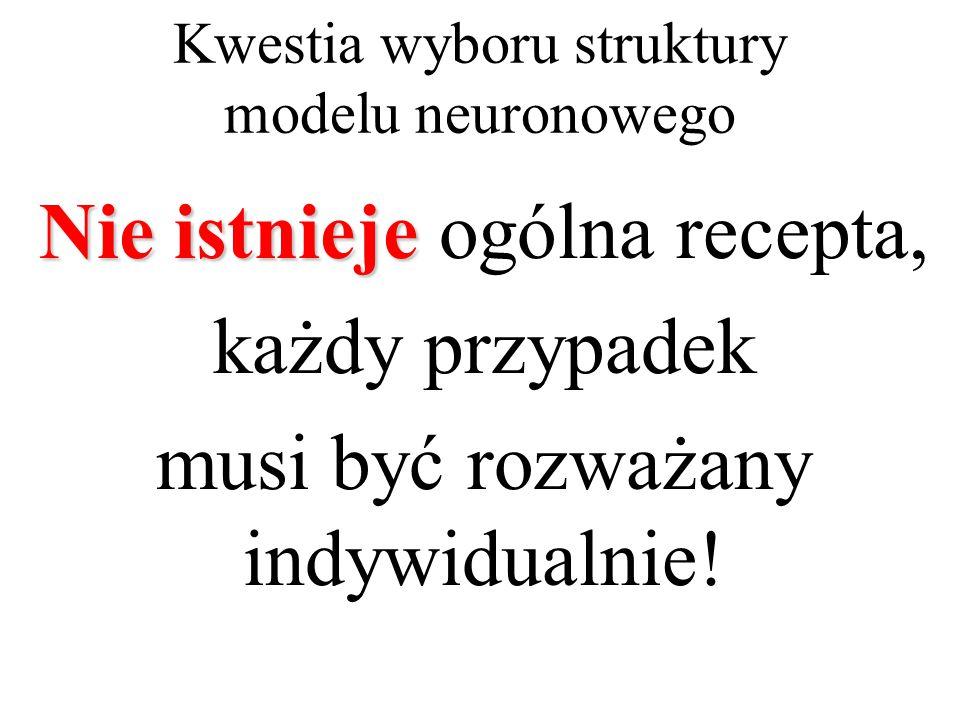 Kwestia wyboru struktury modelu neuronowego