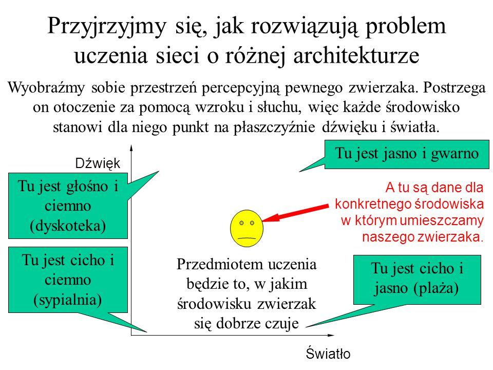 Przyjrzyjmy się, jak rozwiązują problem uczenia sieci o różnej architekturze