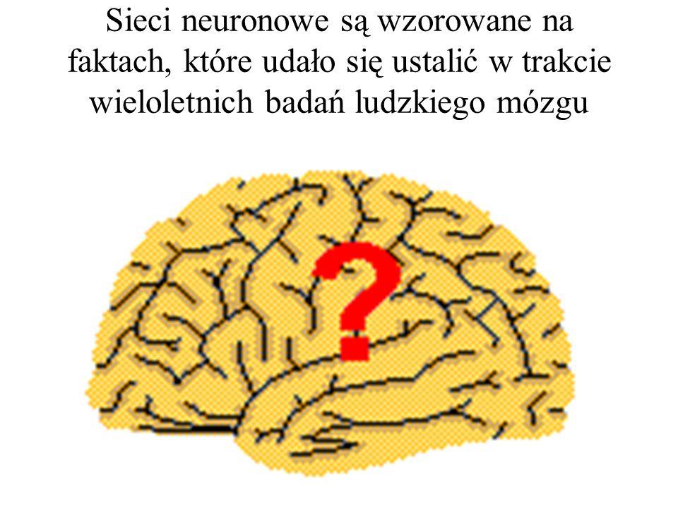Sieci neuronowe są wzorowane na faktach, które udało się ustalić w trakcie wieloletnich badań ludzkiego mózgu