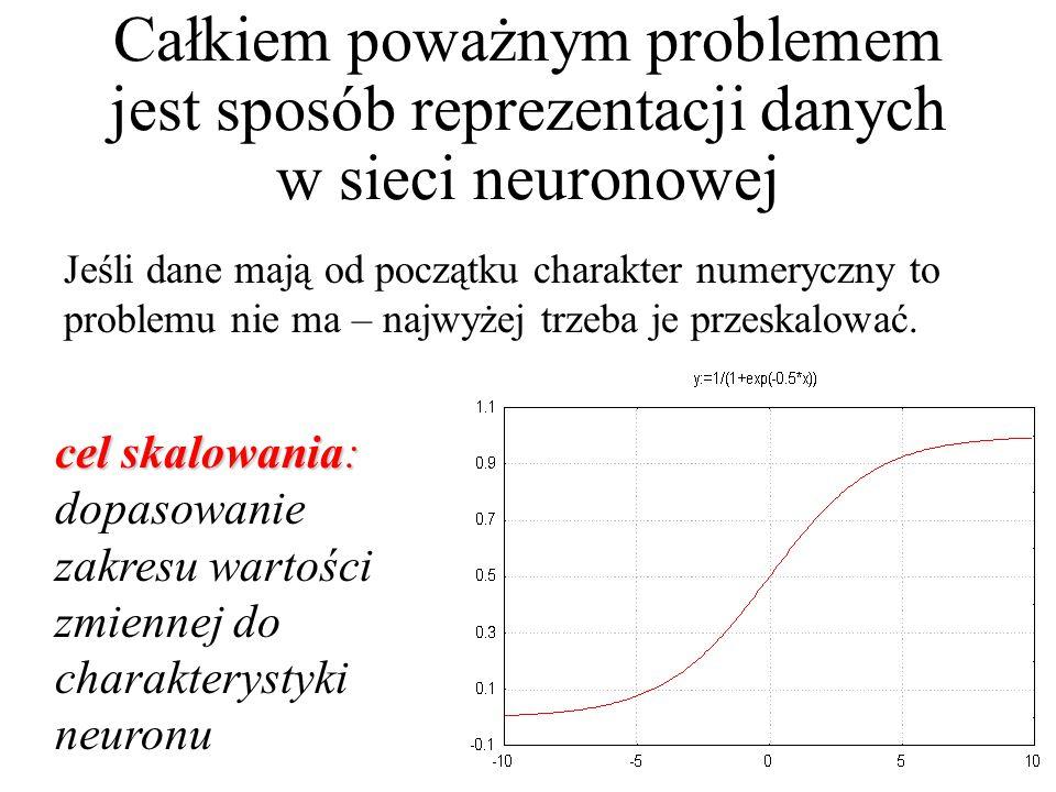 Całkiem poważnym problemem jest sposób reprezentacji danych w sieci neuronowej