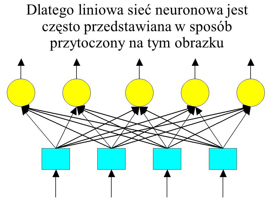 Dlatego liniowa sieć neuronowa jest często przedstawiana w sposób przytoczony na tym obrazku