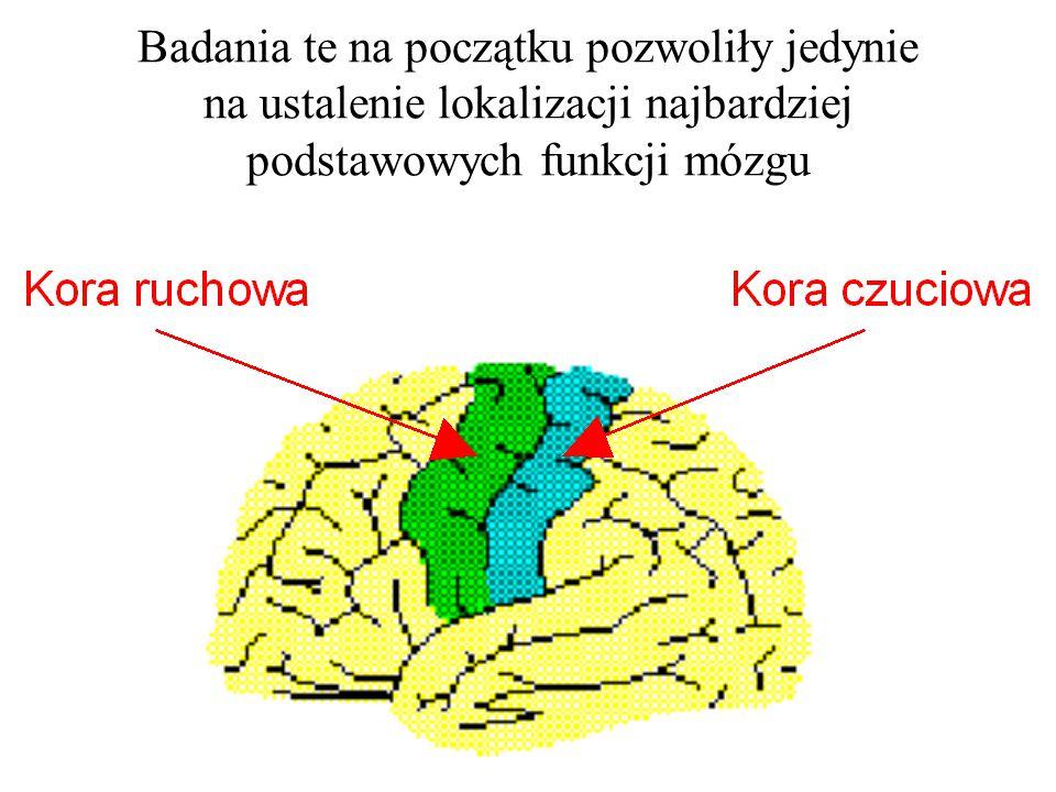 Badania te na początku pozwoliły jedynie na ustalenie lokalizacji najbardziej podstawowych funkcji mózgu