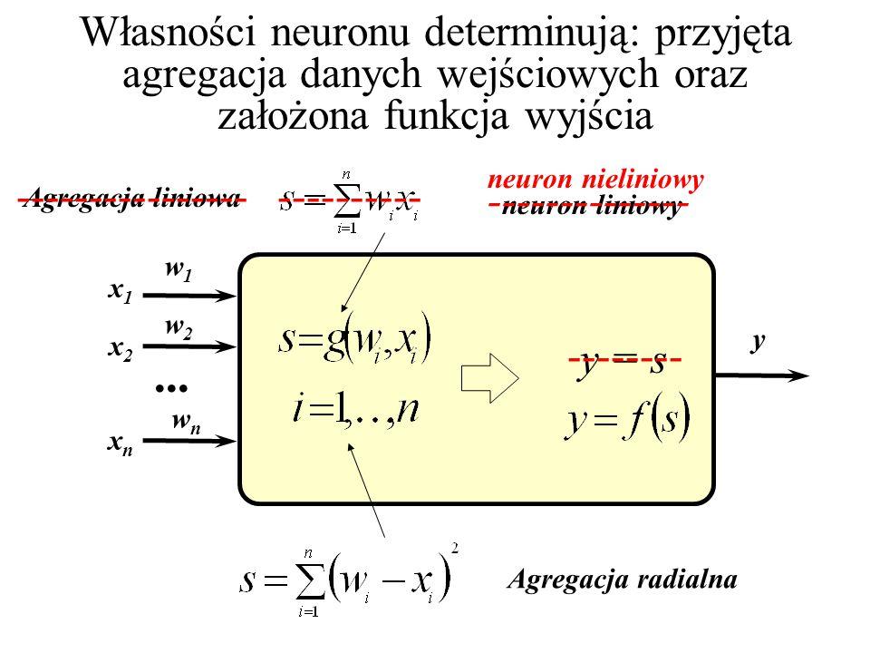 Własności neuronu determinują: przyjęta agregacja danych wejściowych oraz założona funkcja wyjścia