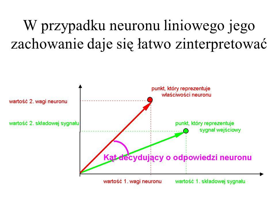 W przypadku neuronu liniowego jego zachowanie daje się łatwo zinterpretować