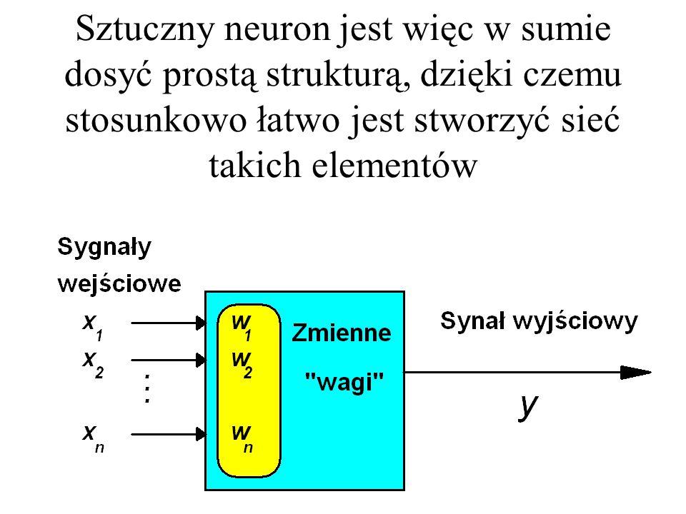 Sztuczny neuron jest więc w sumie dosyć prostą strukturą, dzięki czemu stosunkowo łatwo jest stworzyć sieć takich elementów