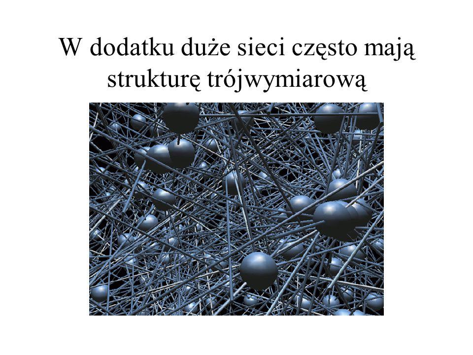 W dodatku duże sieci często mają strukturę trójwymiarową