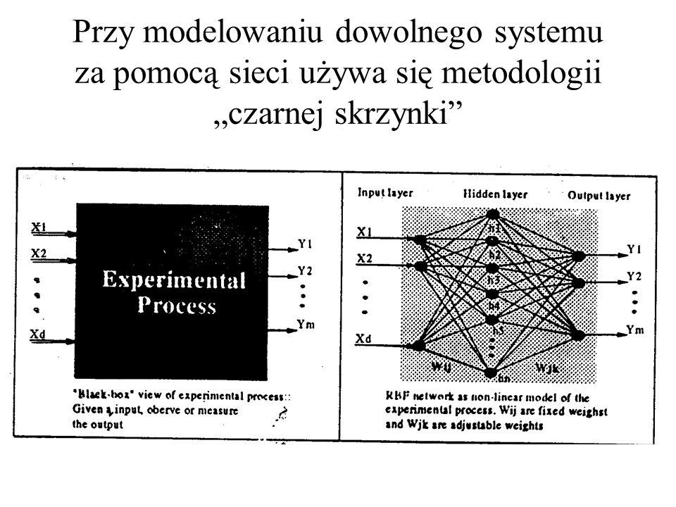 """Przy modelowaniu dowolnego systemu za pomocą sieci używa się metodologii """"czarnej skrzynki"""