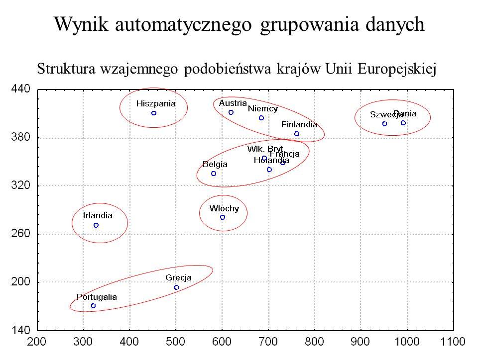 Wynik automatycznego grupowania danych