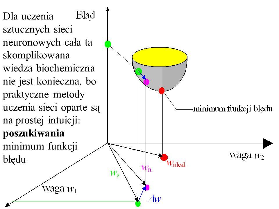 Dla uczenia sztucznych sieci neuronowych cała ta skomplikowana wiedza biochemiczna nie jest konieczna, bo praktyczne metody uczenia sieci oparte są na prostej intuicji: poszukiwania minimum funkcji błędu