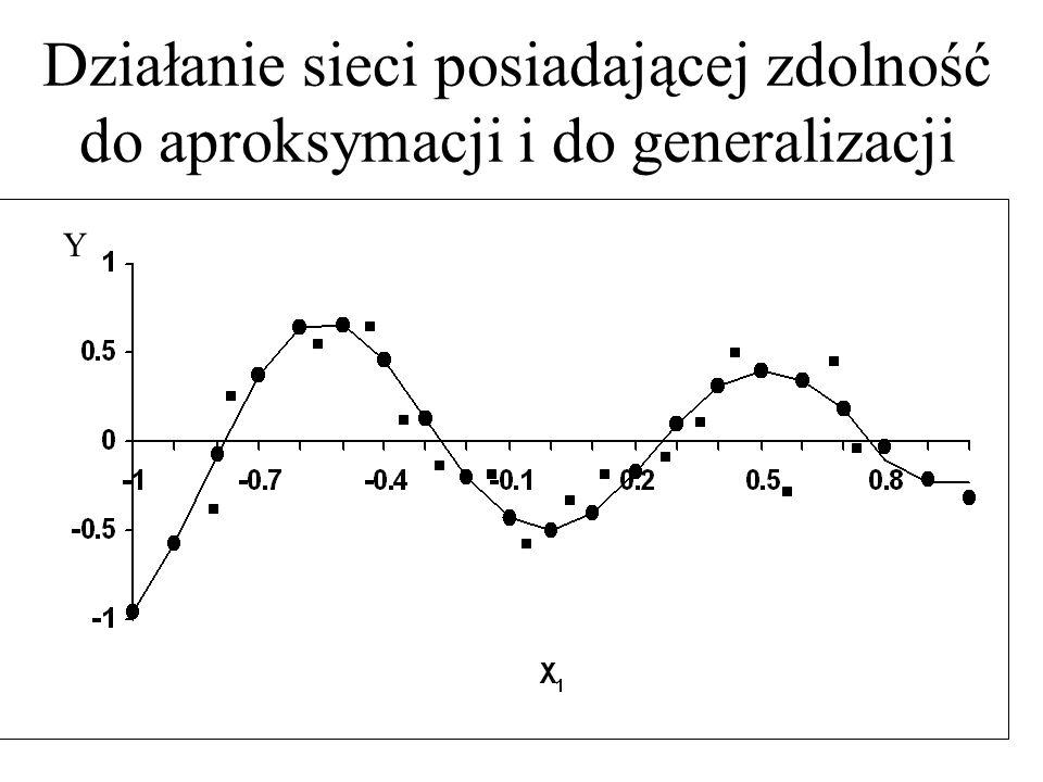 Działanie sieci posiadającej zdolność do aproksymacji i do generalizacji