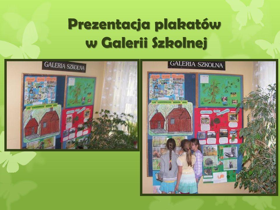 Prezentacja plakatów w Galerii Szkolnej