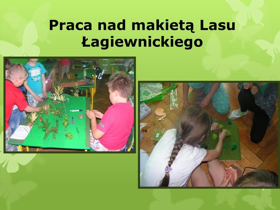 Praca nad makietą Lasu Łagiewnickiego