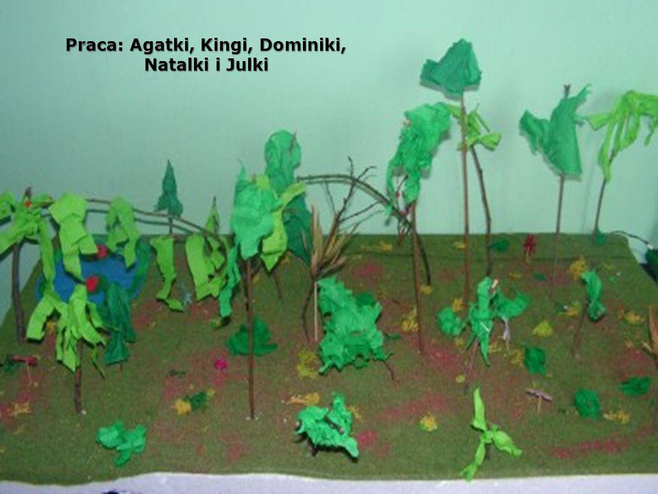 Praca: Agatki, Kingi, Dominiki, Natalki i Julki