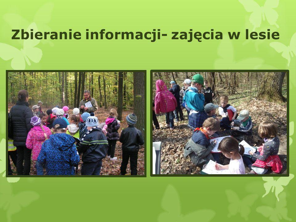 Zbieranie informacji- zajęcia w lesie