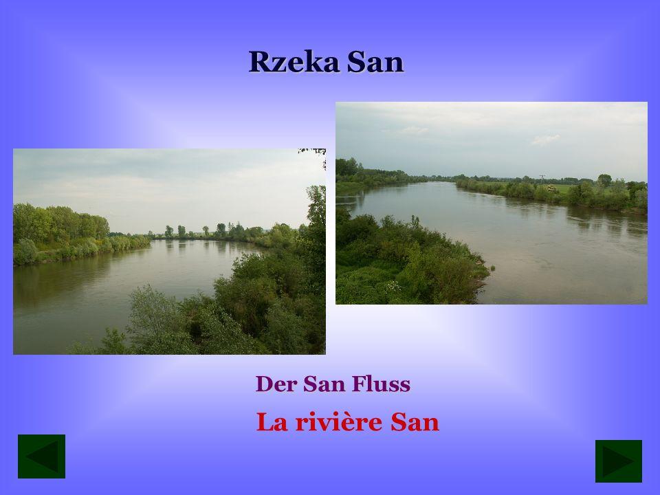 Rzeka San Der San Fluss La rivière San