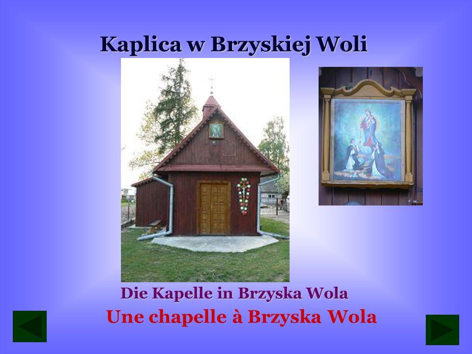 Kaplica w Brzyskiej Woli